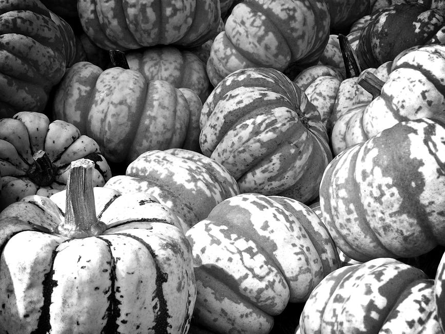 30Fifteen-pumpkin-health-benefits-eat