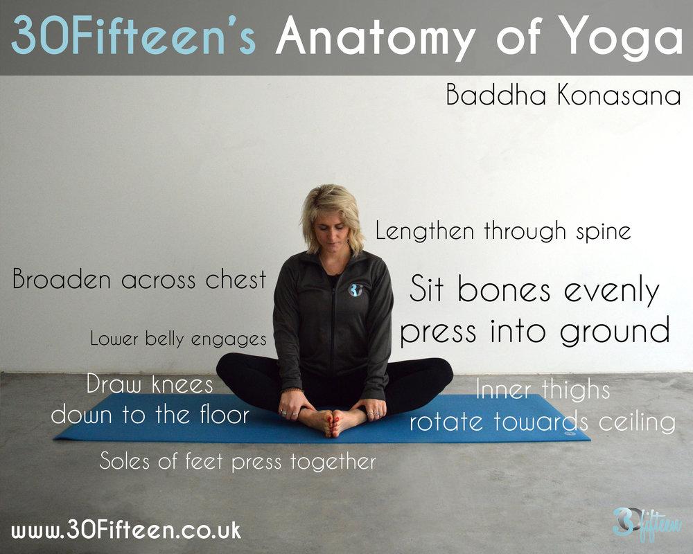30Fifteen Anatomy of Yoga Baddhu Konasana