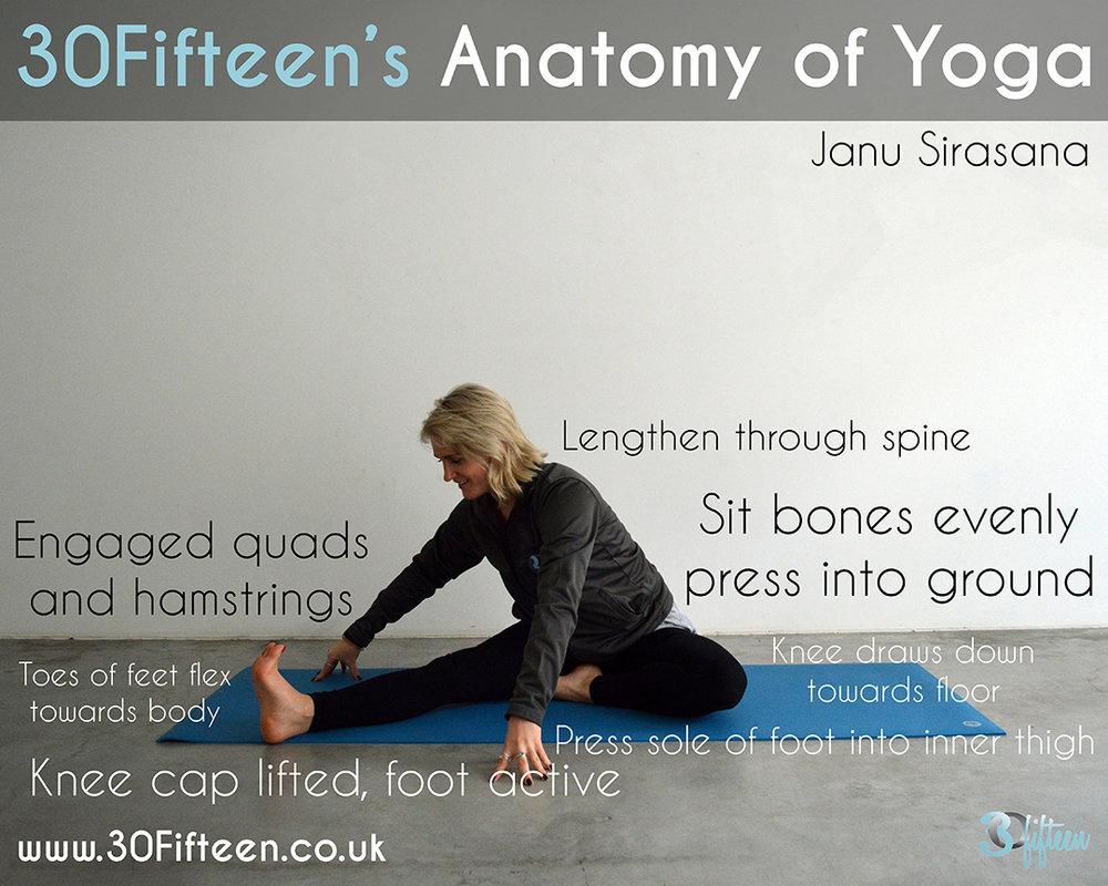 30Fifteen Anatomy of Yoga