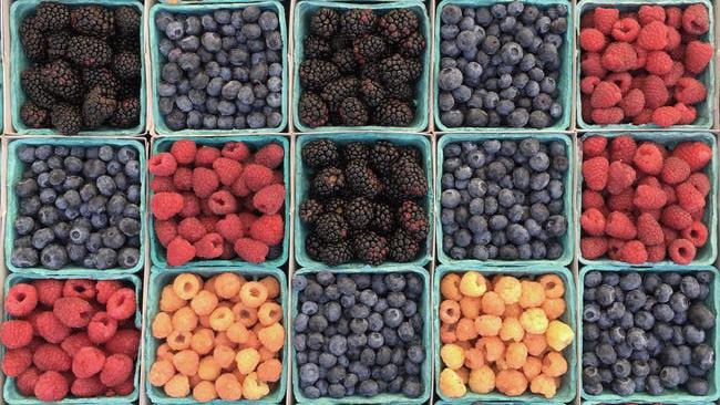 30Fifteen health tips for summer