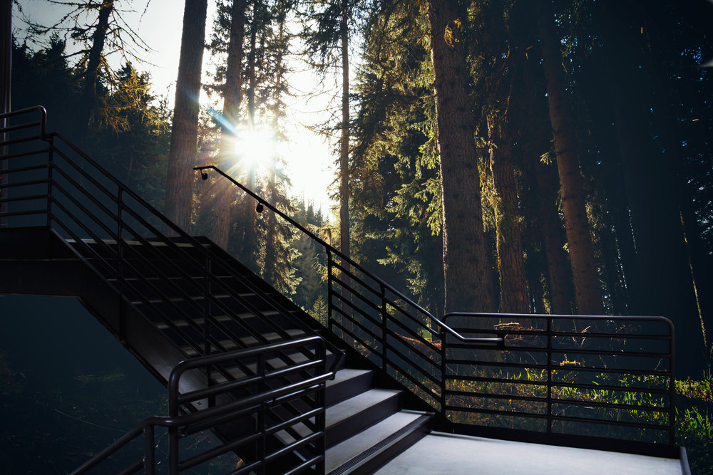 Tudor-Stairs_8.jpg