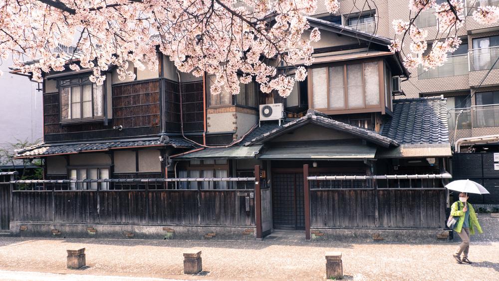 japan_2014-48.jpg