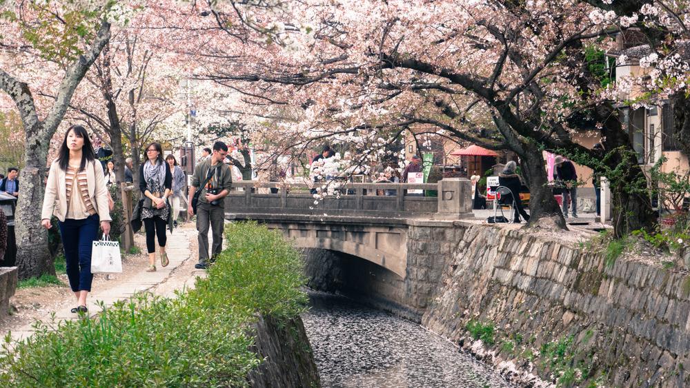 japan_2014-59.jpg