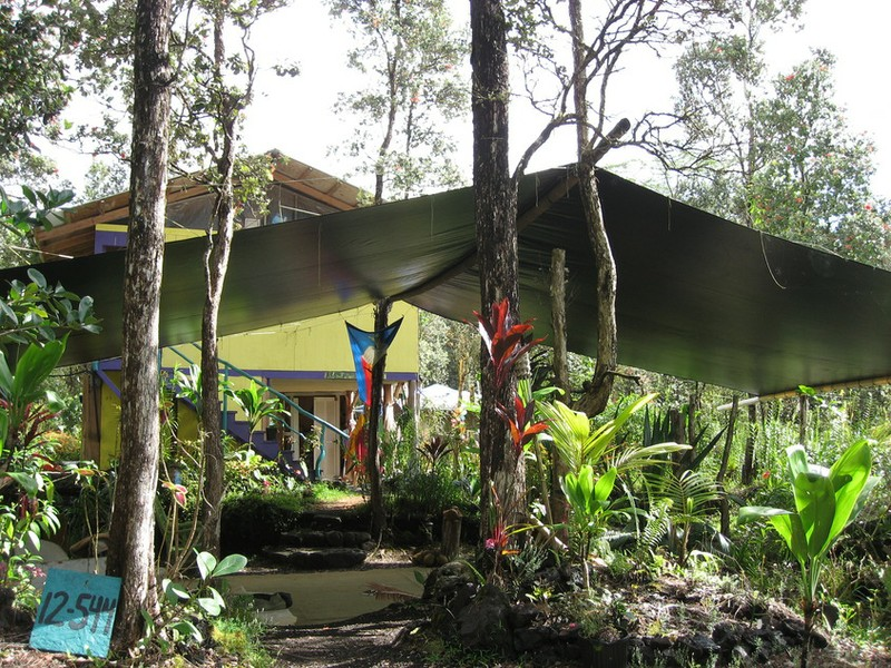 Rainforest Sanctuary.JPG