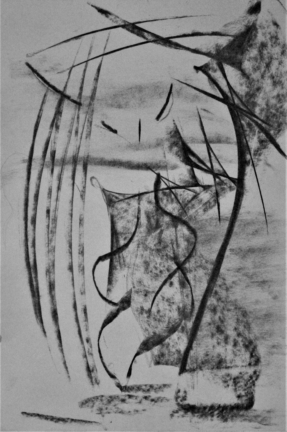 """""""RH1618"""", Charcoal on paper, 9' x 12' in. 2018"""