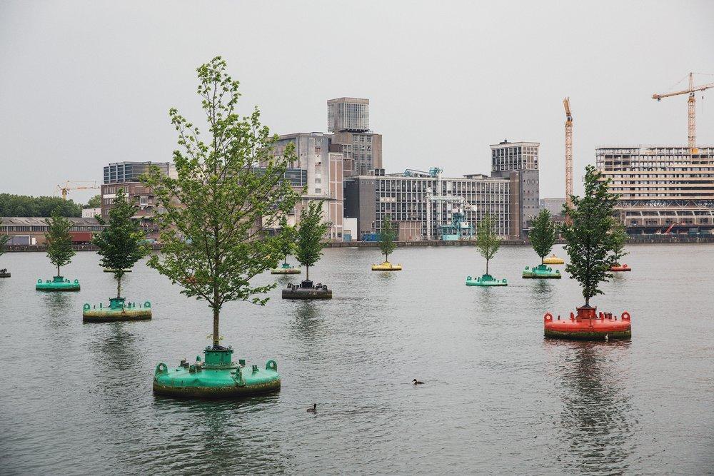 Rotterdam-city-guide1.JPG
