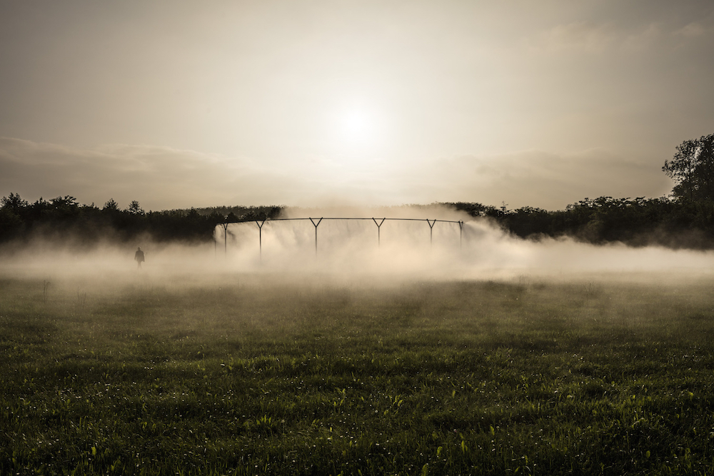 Fog Assembly / Photo Credit: Anders Sune Berg