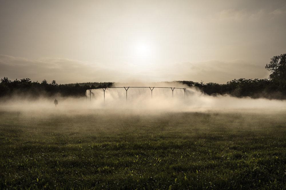 Sis montajı/ Celik, su, enjektör ve pompa sistemi kullanılarak tasarlanmış bu sis simülasyon ünitesi, Eliasson'un bilindik dairesel formlarını tekrarlıyor. Fotoğraf:Anders Sune Berg