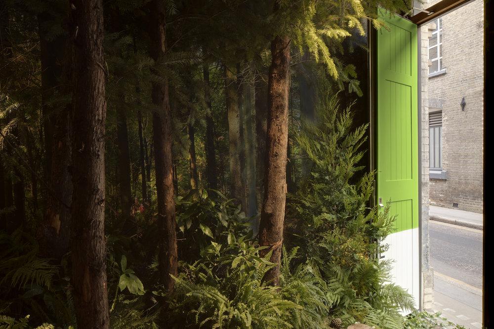 airbnb_greenery-082.jpg