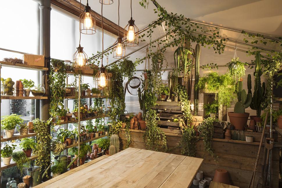 airbnb_greenery-112-970x647-c.jpg