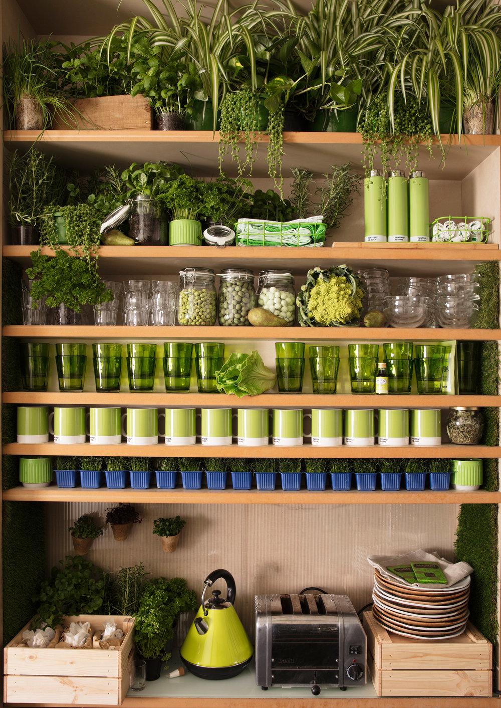 greenery-apartment-installation-airbnb-pantone-design_dezeen_2364_col_8.jpg