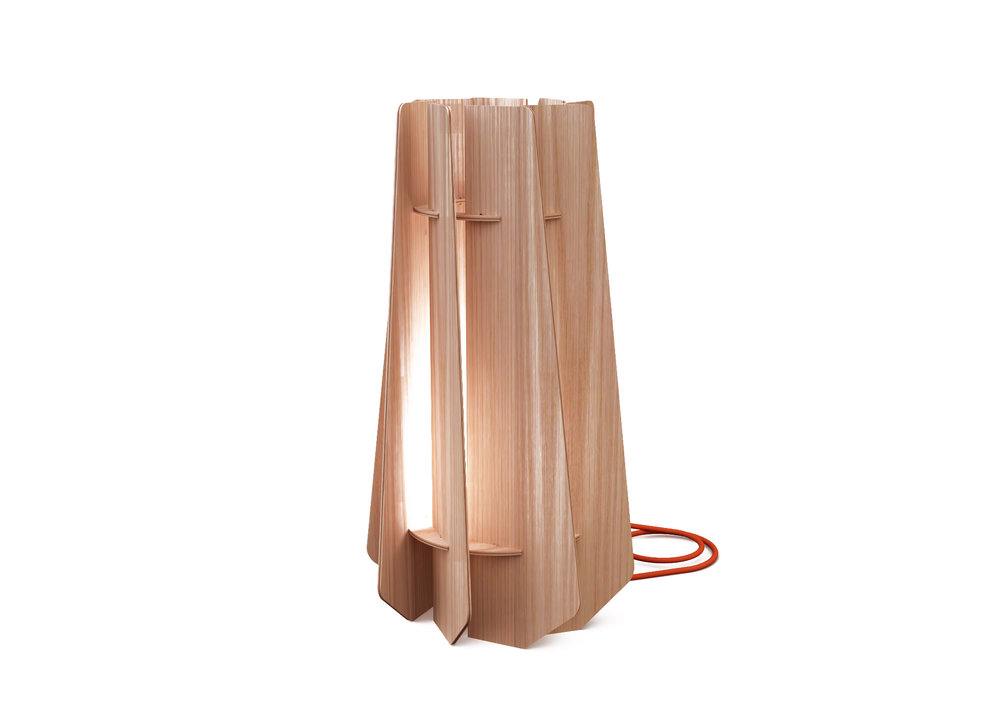 SOME LAMP.jpg