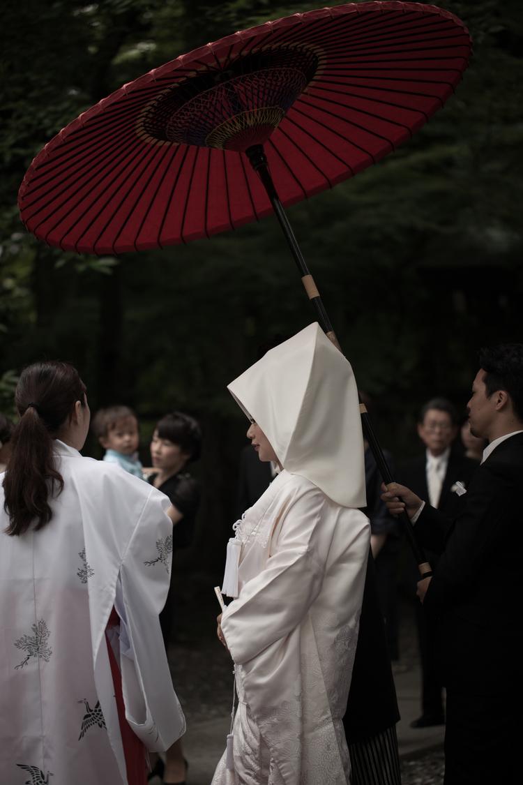 japão { cerimônia shinto }