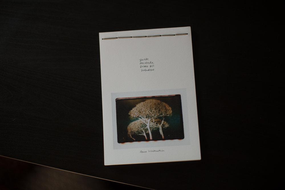 livro_ponte_dourada_sobre_rio_noturno-27.jpg