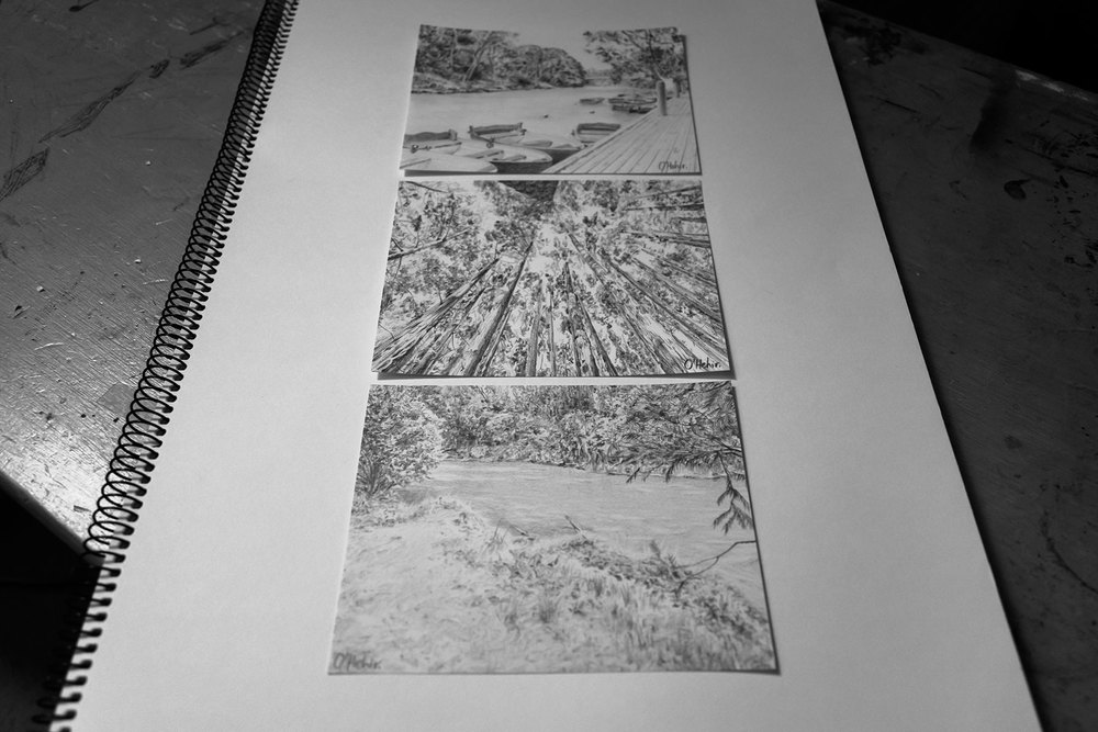 landscapesketches1_mini.jpg