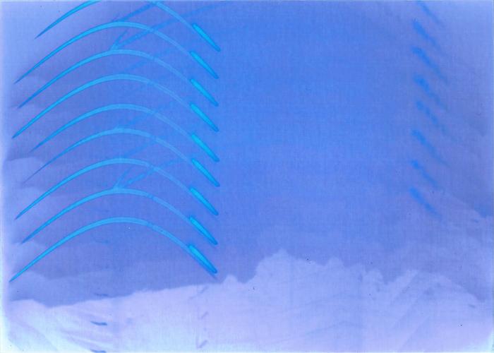 Solargraphy #9 Negative