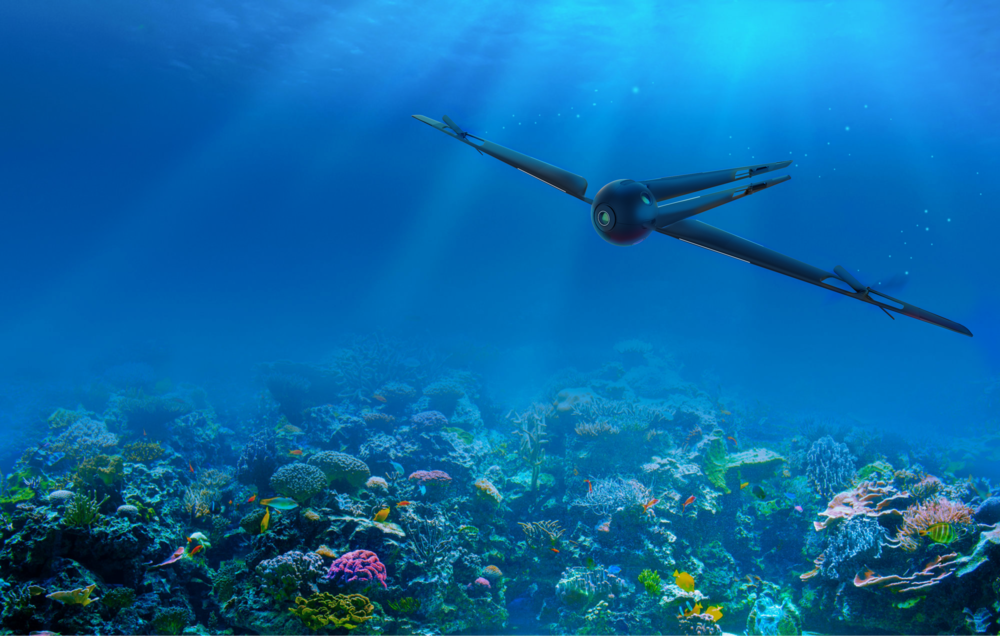 discover.58-underwater.png