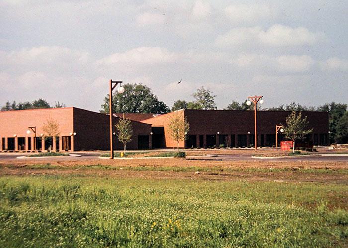 1971 - FALLEN TIMBERS