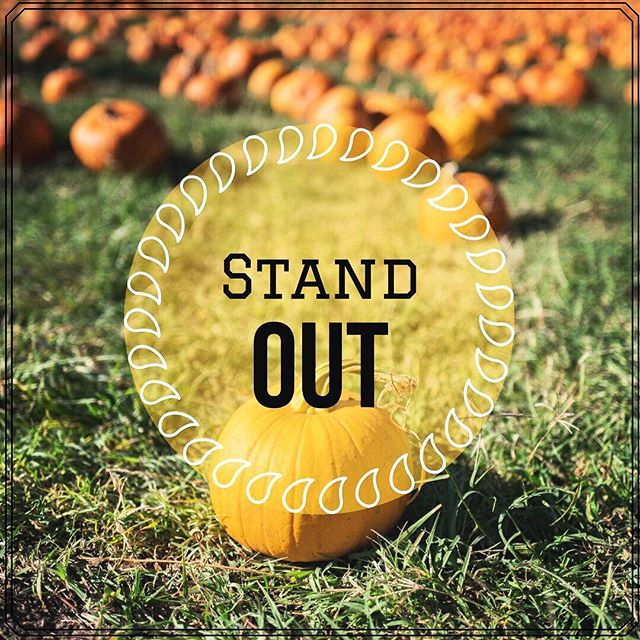Fall is just around the corner! As the trees shed their old leaves, take the opportunity to shed your old social media strategies. Stand out from the crowd online, find your ideal audience, and tell your story. We can help! Contact us through the link in our bio this weekend, and we'll give you 20% off your first month! Hurry, this offer won't last! . . . . . . . . . #Kapstone #socialmediamarketing #consulting #consultant #marketingtips #inspireme #inspireothers #inspirationalquote #standout #motivating #motivationalquote #motivations #strongertogether #workworkworkworkwork #worksmarter #teamwork #orangecounty #fallseason #smallbusinessowner #smallbusinesslove #smallbusinessowners #locals #inspirationoftheday #quotesgram #realestateagents #realestateinvestor #realestatelife #communication #communitylove
