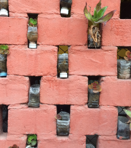 Living wall with plastic drink bottle planters in Chiang Mai, Thailand