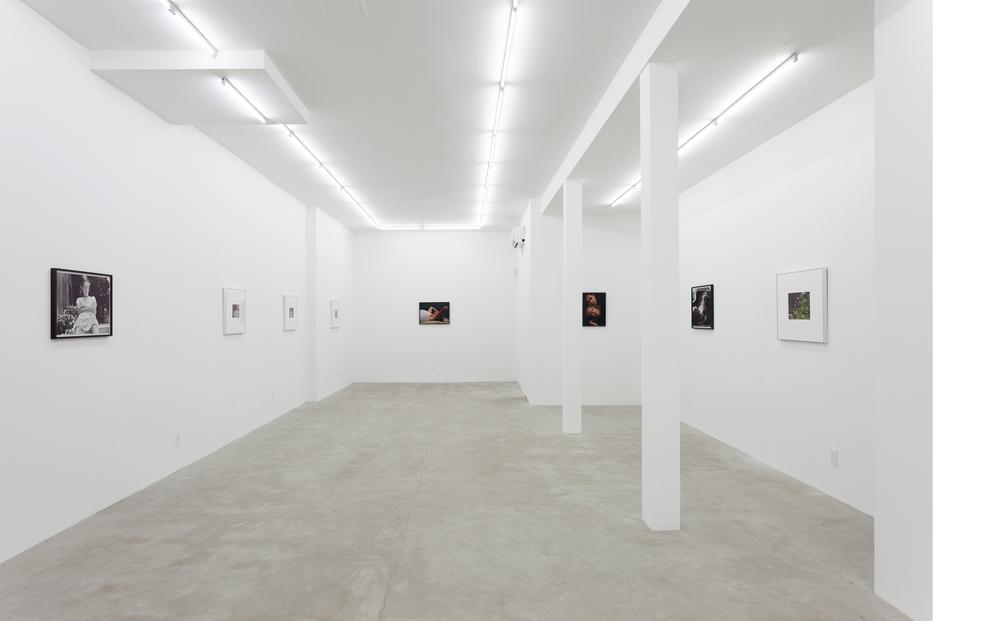 Installation, Leslie Fritz, New York, NY