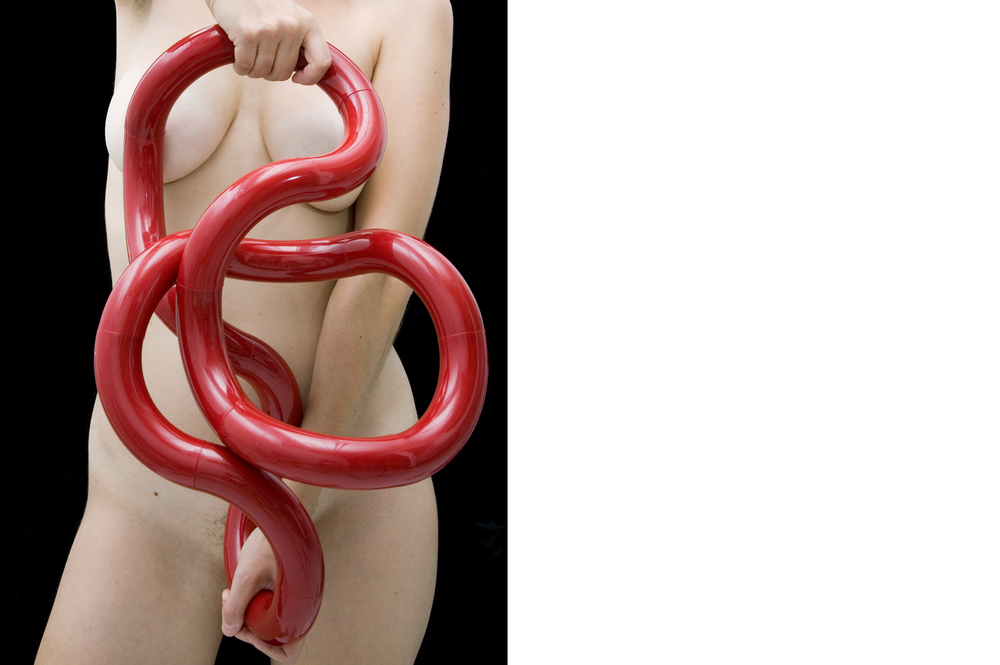 Mudular Nude  2011, Digital C-print, 25 x 19 inches