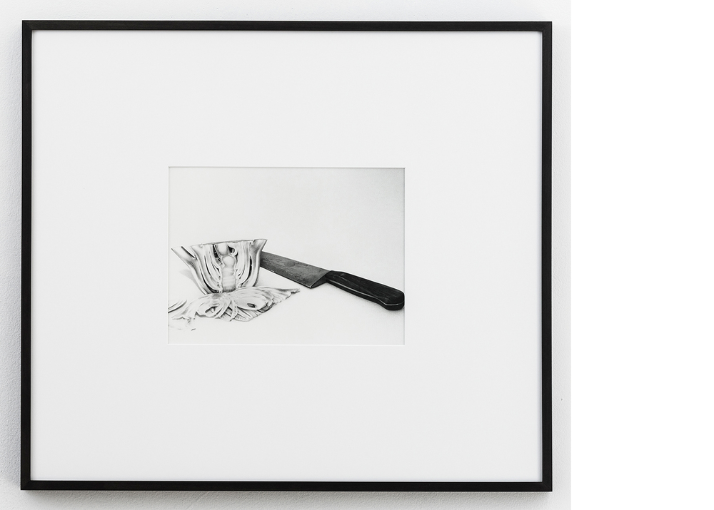 Fennel , 2015, Silver gelatin print, 24x27 inches framed