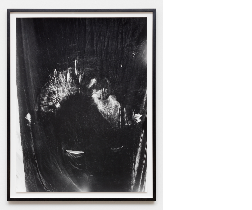 Vagina/Vase (Imprint) , 2011, Silver gelatin print, 32x24 inches