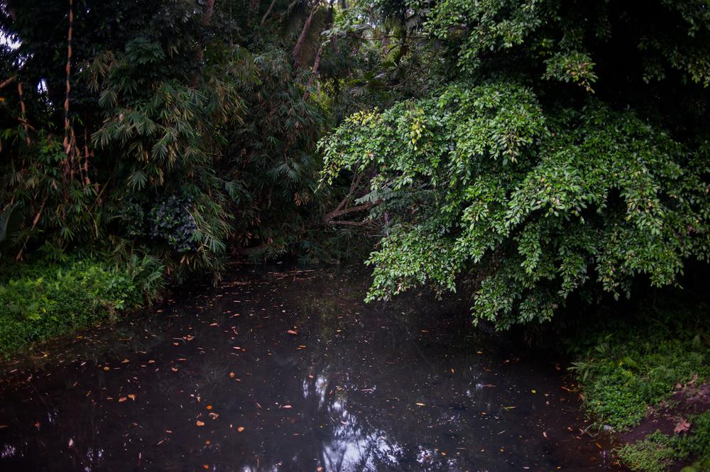 20120720_KEVINMICHAELBRIGGS_indonesia_001-3.jpg