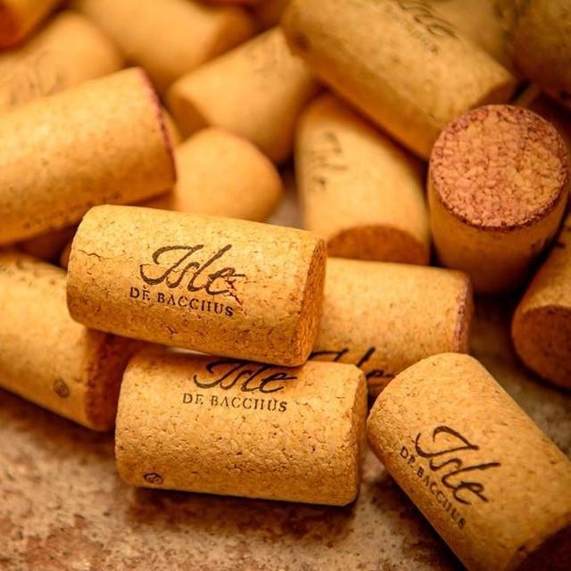 Le Vignoble Isle de Bacchus, situé sur l'Île d'Orléans, s'avère un pionnier dans l'histoire de la viticulture québécoise. 🍇🍷 Goûtez et procurez-vous leurs vins au Marché d'Antoine! 🎄
