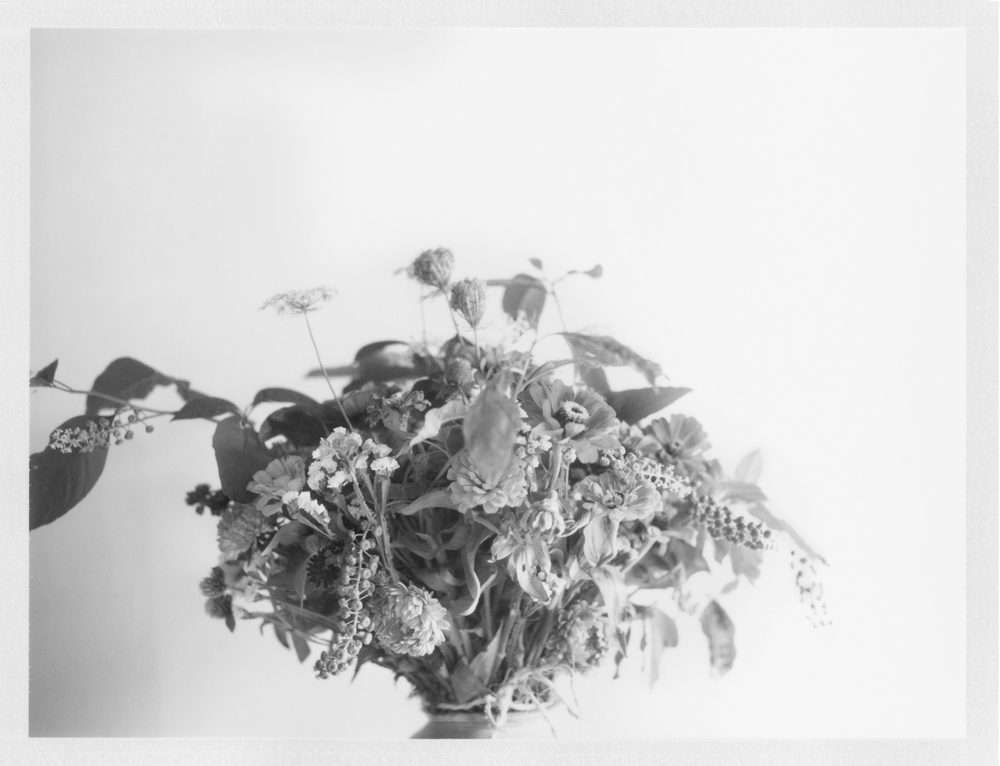 "Talmage's Boquet. 2014. Archival Pigment Print. 7"" x 9"""
