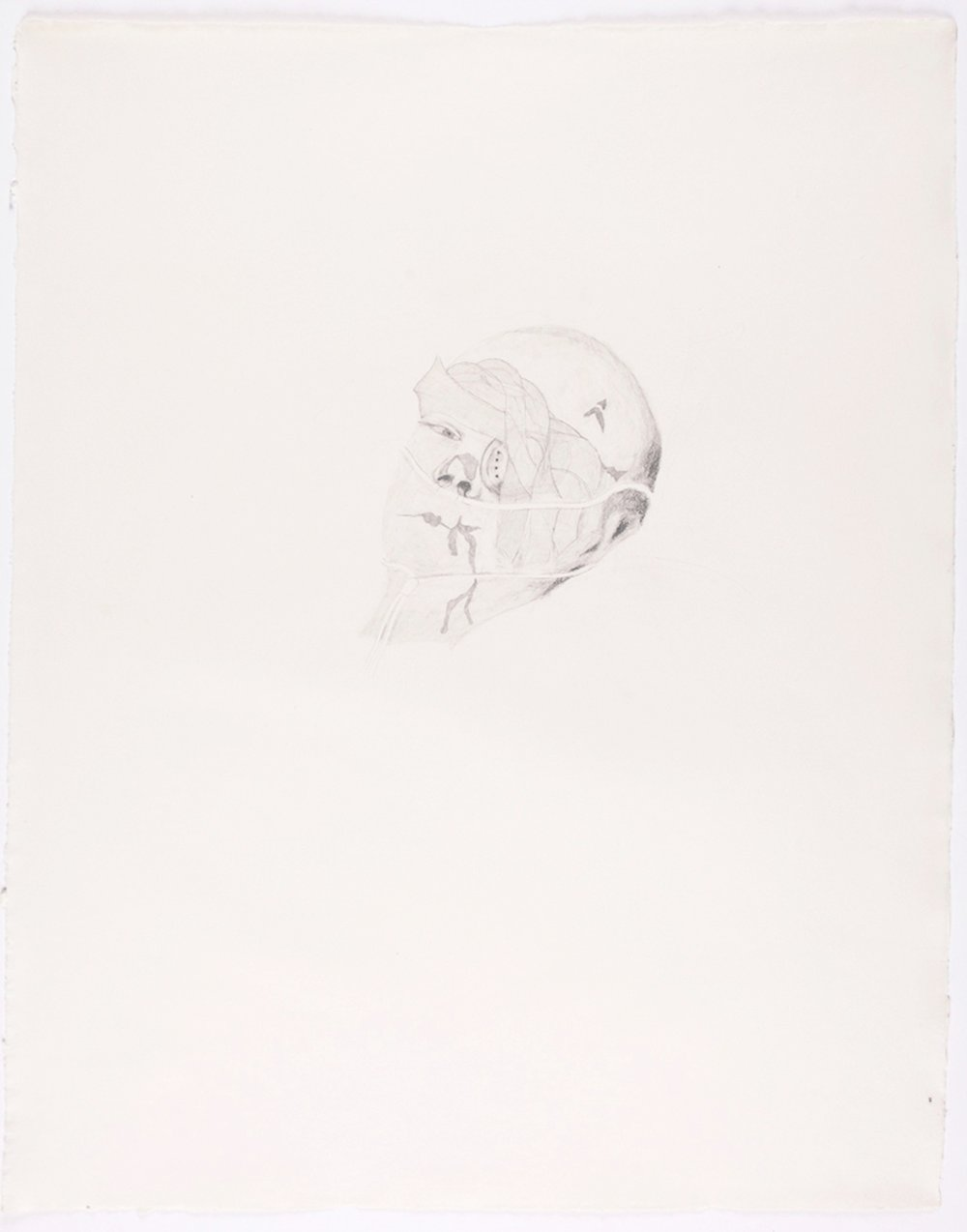 "Bandaged Soldier II. 2010. Pencil on Paper. 30"" x 22"""