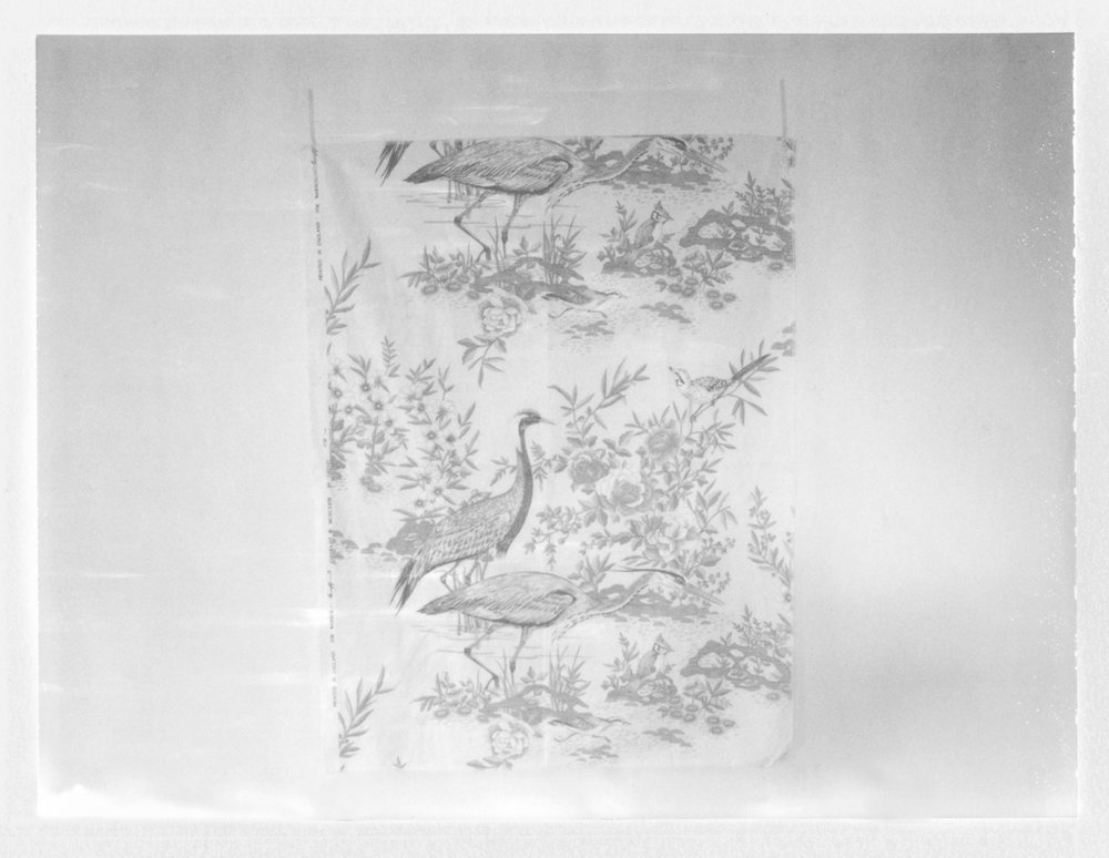 "Fabric Piece with Birds. 2015. Archival Pigment Print. 6"" x 8"""