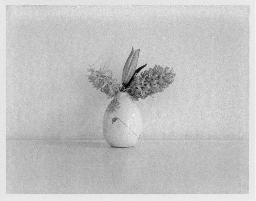 "Hyacinths and Lilly. 2017. Archival Pigment Print. 7"" x 9"""