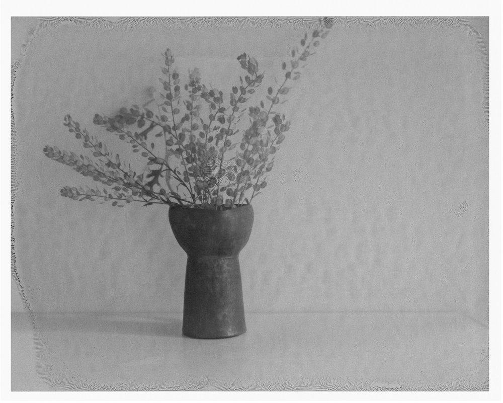 """Hague's Vase. 2016. Archival Pigment Print. 7"""" x 9"""""""