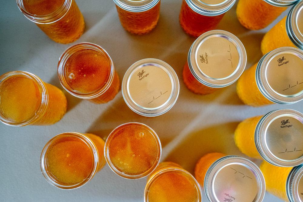 Bees-10.jpg