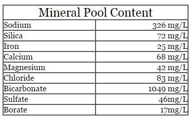 Mineral Content: sodium - 326 mg/L silica 72 mg/L iron 25 mg/L calcium 68 mg/L magnesium 42 mg/L Chloride 83 mg/L bicarbonate 1049 mg/L sulfate 46 mg/L borate 17 mg/L