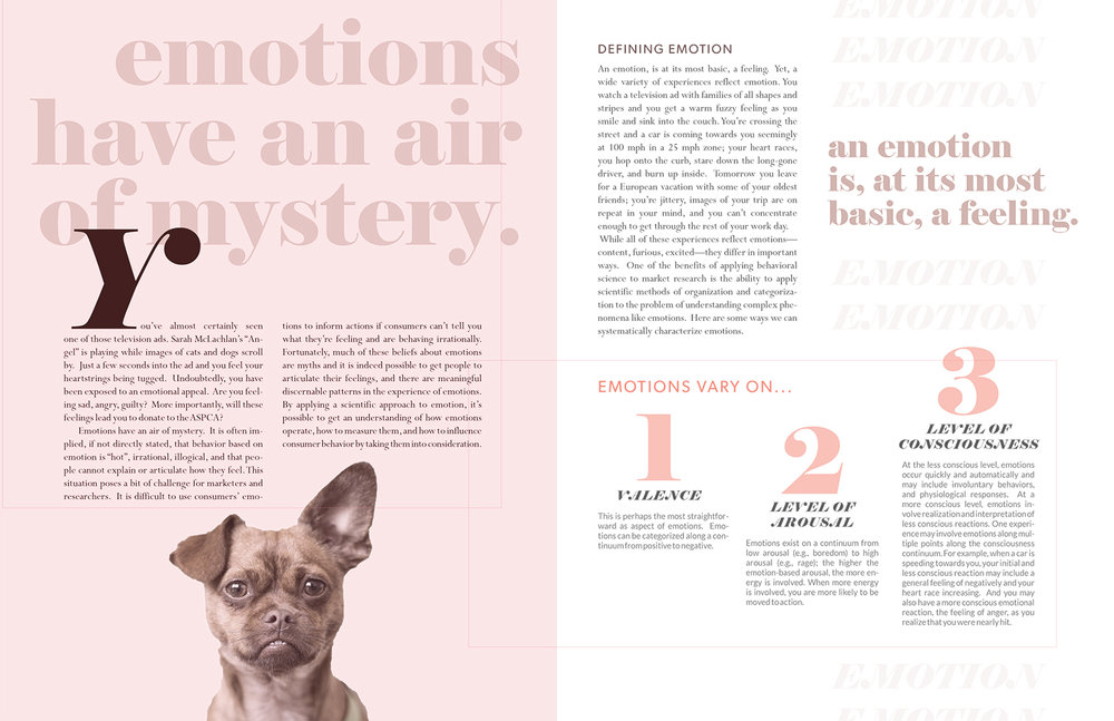 Emotions-2.jpg
