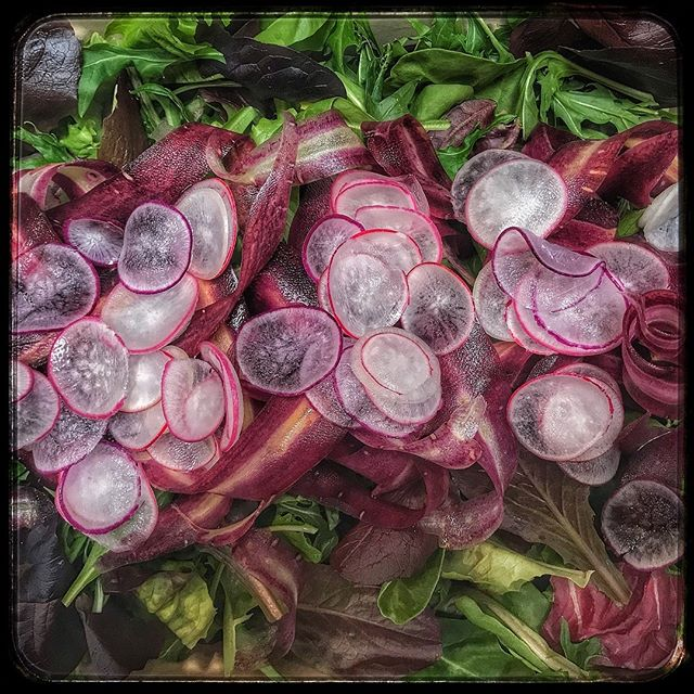 Loving the wintry color palette in our coastal lettuce salad. #salad #coastal #wintry #colorpalette #purplecarrots #radishes #foodtogo #pickupanddelivery #sonomacounty #marincounty #napavalley