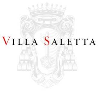 VS Simple Logo.jpg