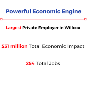 Economic Engine -Northern Cochise.png