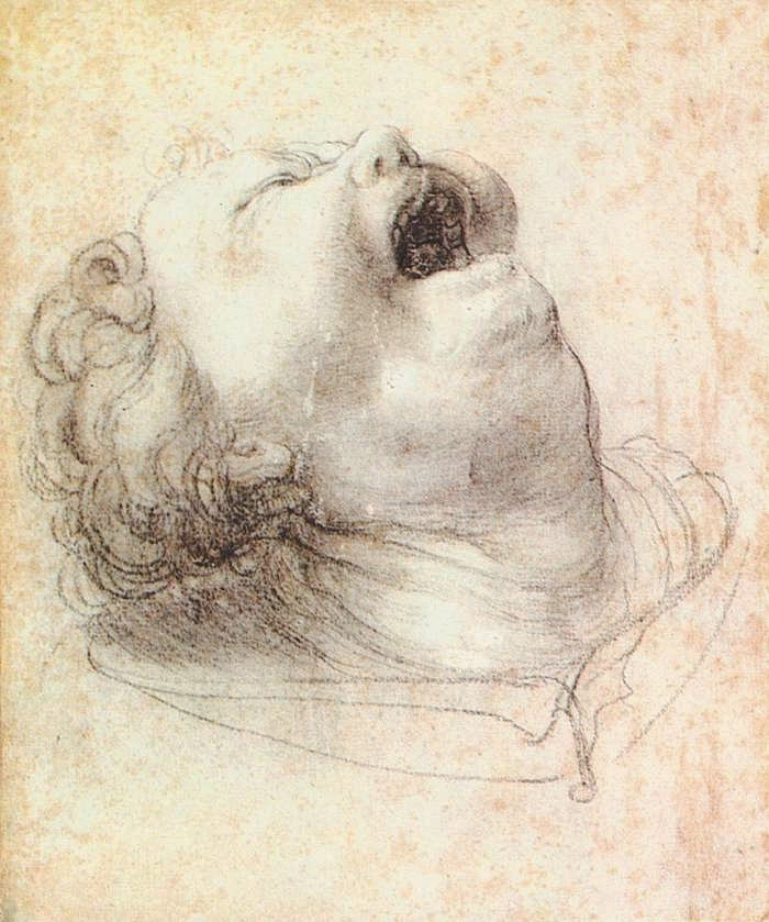 Matthias Grünewald, Head of a Shouting Man, 1520   Placement:  HAND | CHEST |