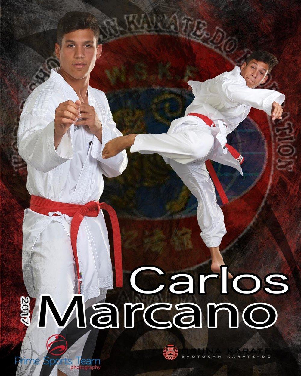 Martial Artscalros web-1.jpg