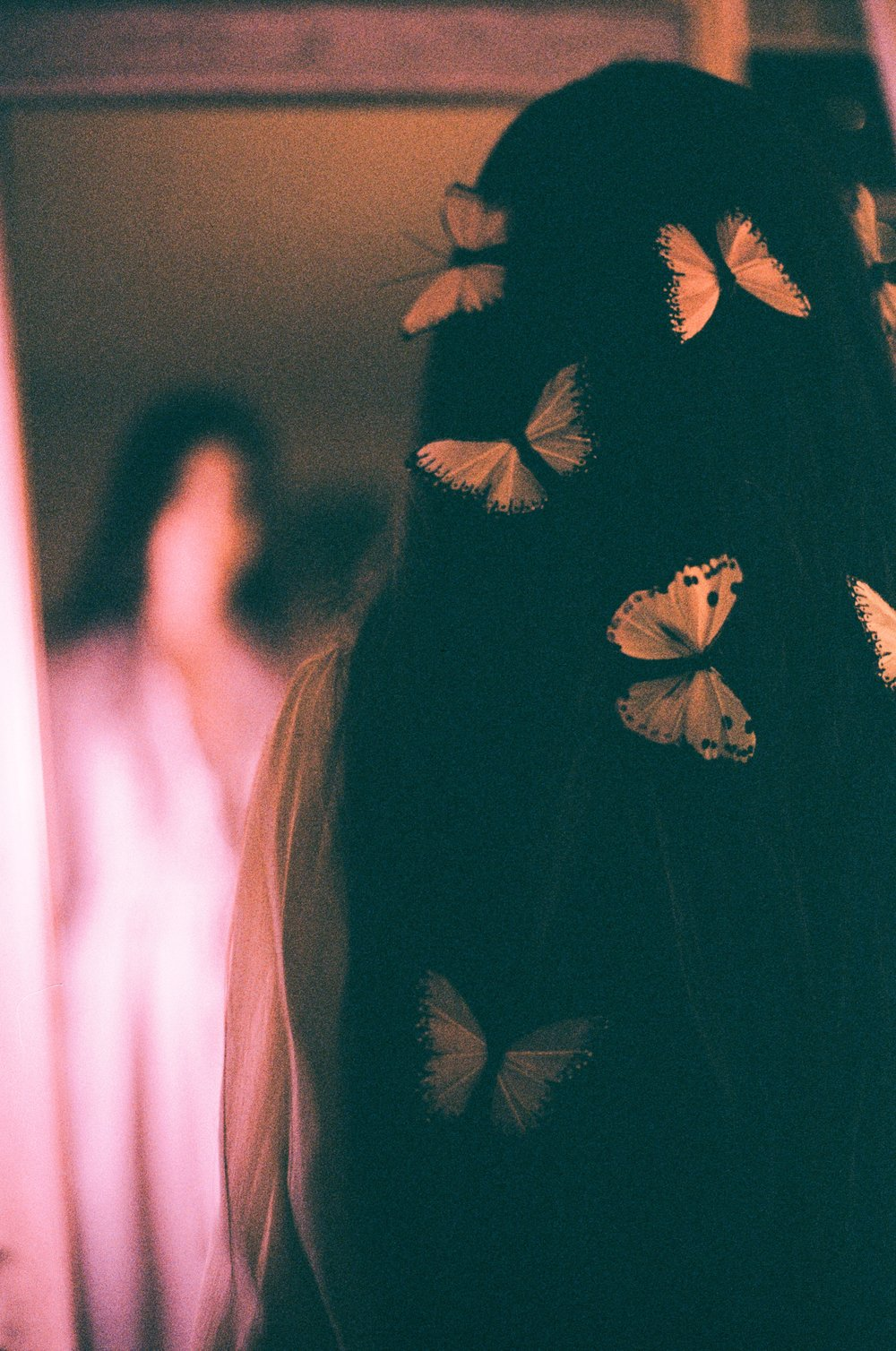 Butterflies + a reflection on Kodak Gold 200 35 mm film