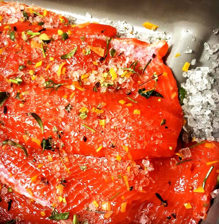 Wild Coho salmon in mid-cure, one of our recipes in development.