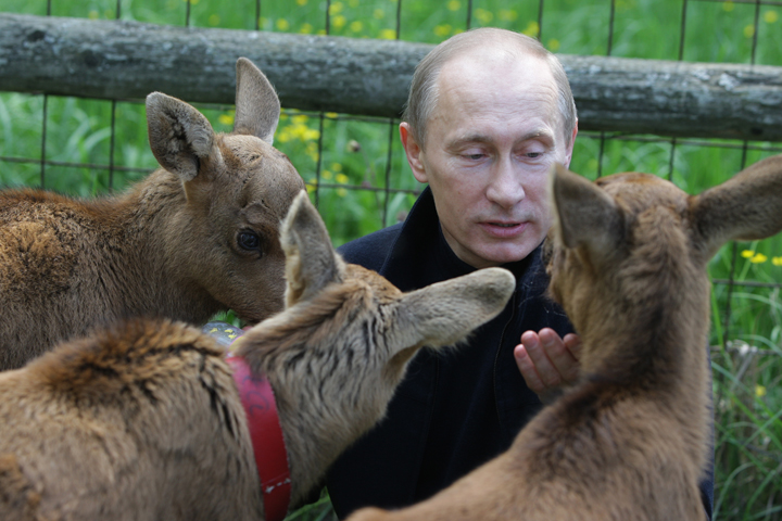 putin_animals.jpeg