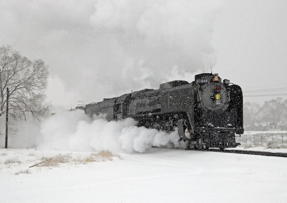 cover_-train.jpg