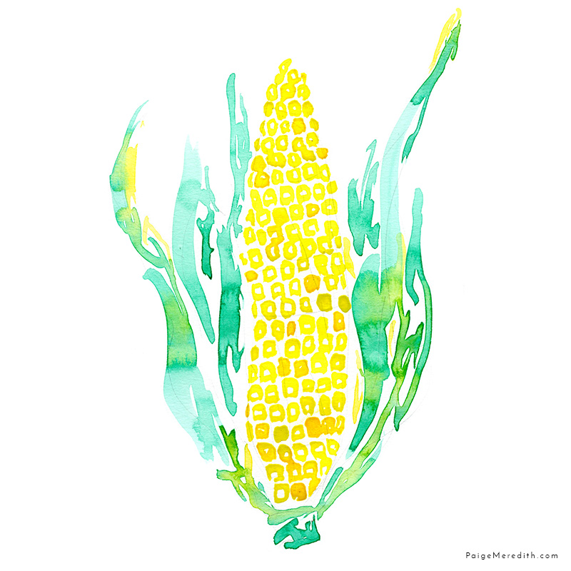 web_everyday_corn_161116.jpg