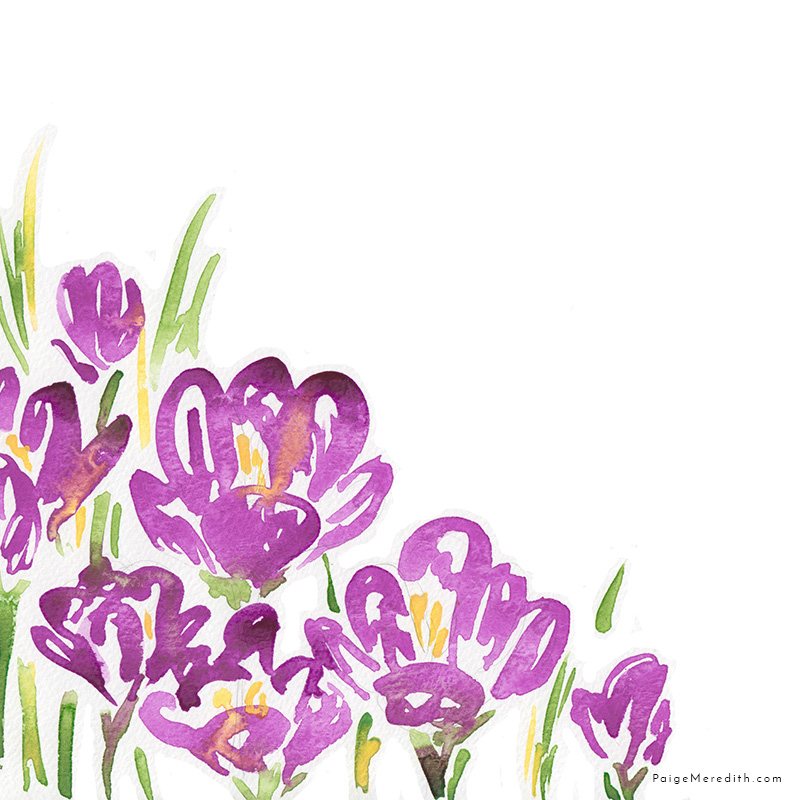 web_pattern_crocus_watercolorflowerfloral.jpg