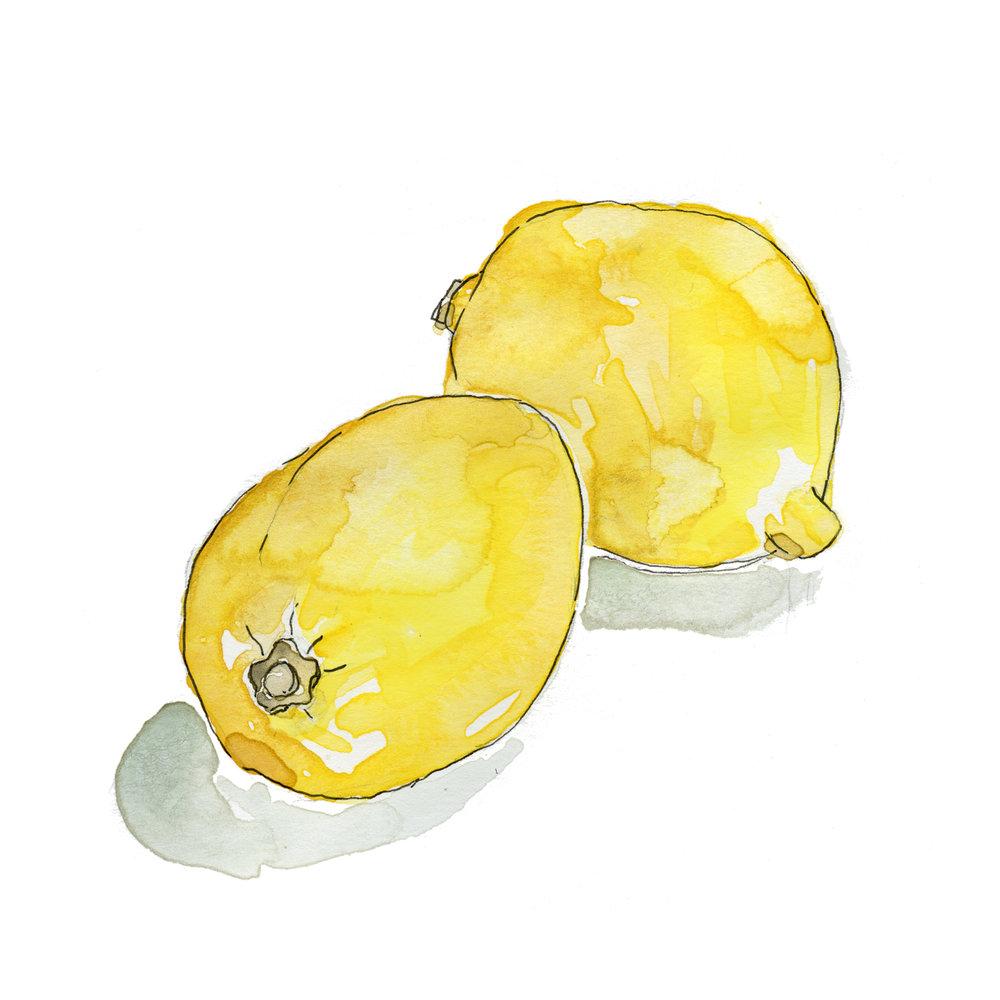 100_09_social_lemons.jpg